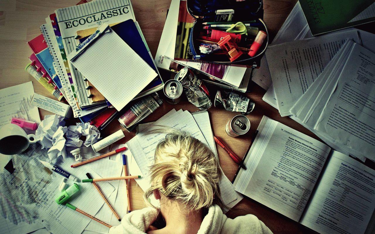 учеба и бизнес